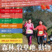 羊が放牧された牧草地を走る!? マザー牧場&LOVESPO TOKYO いちごトレイルラン(12/23東京)