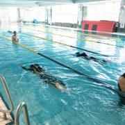 【6/3開催】自分の泳ぎを見つめ直す「トータル・イマ―ジョン・スイミング」1DAYワークショップ